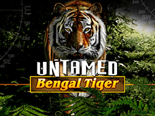 Автомат Untamed Bengal Tiger